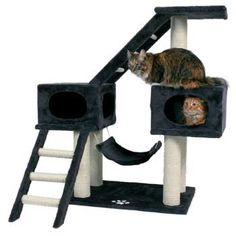 Trixie Malaga Cat Tree in Anthracite-Petco. Pretty sure this is an absolute necessity. Because I'm a crazy cat lady.