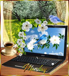 is the world's largest social network for good, a community of over 40 million people standing together, starting petitions and sharing stories that inspire action. Happy Monday Gif, Happy Week, Happy Sunday, Monday Morning Quotes, Monday Quotes, Good Morning My Friend, Good Morning Wishes, Monday Coffee, Monday Blessings