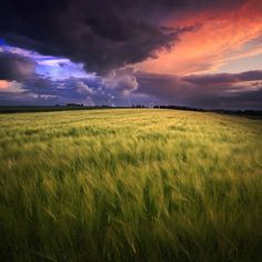 Wanjal : Great Landscape Picture