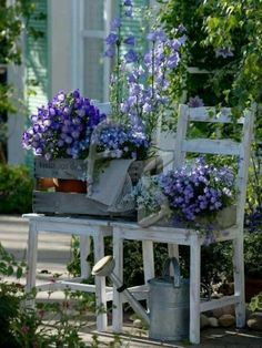 OLD CRATES WITH POTTED FLOWERS RESTING ON WEATHERED VINTAGE CHAIRS.