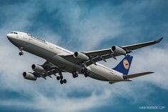 Lufthansa A340-300 - D-AIGT - Viersen - Landeanflug - Fahrweg ausgefahren…