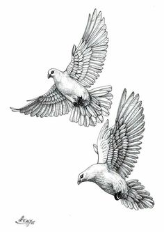 Best Tattoo Bird Dove Holy Spirit IdeasYou can find Dove tattoos and more on our website. Tattoo Sketches, Tattoo Drawings, Dove Sketches, Tattoo Homme, Pigeon Tattoo, Dove Drawing, Dove Tattoo Design, Angel Tattoo Designs, Tattoo Ideas