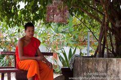 a monk in the garden of a monastery- Laos #monk #laos