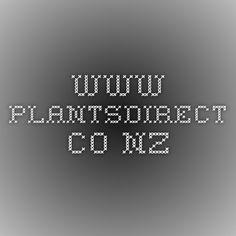 www.plantsdirect.co.nz