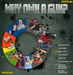 Top reasons people own guns