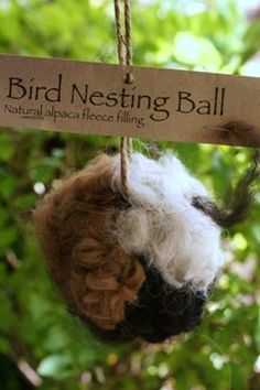 "Bird Nesting Ball. The all natural alpaca fiber will offer your backyard birds a soft material with which to line their nests. Hang the 4"" nesting ball freely from a tree limb."
