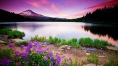 Güzel Doğa Manzara Resimleri İndir | En Bilgin - Bilgi Arama Motoru