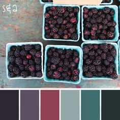 Google Image Result for http://www.salazucarblog.com/wp-content/uploads/2012/08/blackberries1.gif