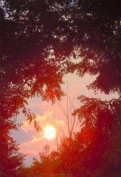 Sunset - 20th July 2014