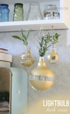 Lovely hanging herb vases made out of lightbulbs (@ The Paper Mama)