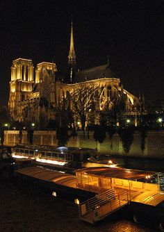 Notre Dame night view from harbor