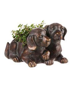 This Metallic Finish Dog Planter is perfect! #zulilyfinds
