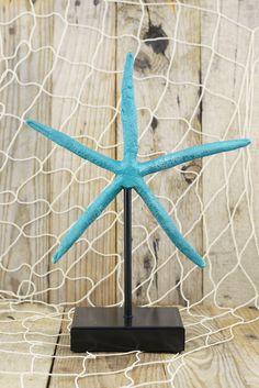 "Turquoise Starfish 10"" Display"
