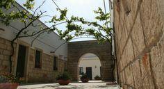 Salice Salentino è il nome di uno dei vitigni autoctoni della Puglia più conosciuti e apprezzati e vale la pena il viaggio fino lì per comprarlo direttamente.   Non solo, per il wine tour tra le vigne delle cantine di Castello Monaci e di Cantele, produttori di questo vino in modo eccelso.  Continua a leggere su http://hitany.it/it/blog/2014/apr/22/salice-salentino-tra-arte-e-vino-228