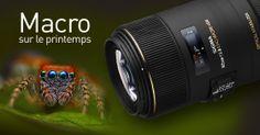 Le #Sigma 105 F2.8 macro DG EX #Canon , un objectif à mettre dans toutes les mains des fans de #macrophotographies ! Découvrez le en cliquant deux fois sur l'image. Profitez également au passage de notre formation sur la macrophotographie sur le site www.phoxacademy.fr