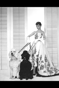 15 rare vintage fashion photos of Audrey Hepburn: