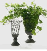 """French Open Wire Terrace  Urn 14"""" Tall  $22 each / 3 for $21 each"""