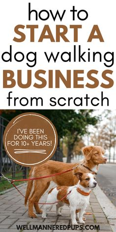 How to start a dog walking business from scratch. Tips from a professional dog walker & pet sitter.