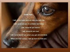 To My Dog......AMEN!!