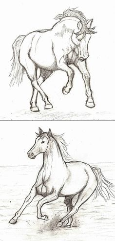 Cool Art Drawings, Horse Drawings, Pencil Art Drawings, Art Drawings Sketches, Easy Drawings, Animal Drawings, Arte Equina, Horse Sketch, Animal Sketches
