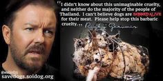 Ricky Gervais, Dog meat trade, Yulin Festival, Dogs