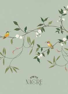 Nacre Botanicals Brand Identity & Pattern Illustration Design Nacre Botanicals is a collection of small-batch, handcrafted wellness products born of a love. Pattern Illustration, Botanical Illustration, Floral Illustrations, Illustrations Posters, Fabric Painting, Botanical Prints, Graphic Design Inspiration, Wallpaper, Pattern Design