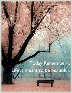 Today Remember, life is meant to be beautiful #quote