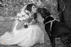 puppy love ♥ #rickbouthiettephotography #nhweddings Castle in the Clouds   Moultonborough, New Hampshire #elegantwedding #fallnhwedding #outdoorweddingphotos #nhweddingphotographer #cathedralveil