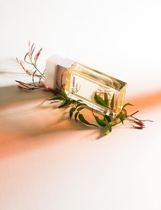 Perfume and Beauty Products Photography Inspiration for Karen Gilbert PinsMore ideas Perfume Coco Chanel, Perfume Versace, Chloe Perfume, Perfume Good Girl, Best Perfume, Still Life Photography, Beauty Photography, Product Photography, Photography Bags