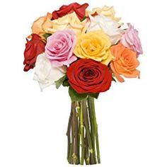 Benchmark Bouquets Dozen Rainbow Roses, for Valentine's Day No Vase