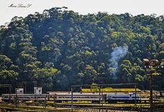 Passeio de Trem Luz - Paranapiacaba
