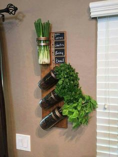 Hanging Jar Herb Garden 'With a Twist!' - Hanging Jar Herb Garden 'With a Twist!' Hanging Jar Herb Garden 'With a Twist! Apartment Herb Gardens, Apartment Plants, Apartment Ideas, Apartment Gardening, Culture D'herbes, Diy Herb Garden, Herbs Garden, Garden Tips, Wall Herb Garden Indoor
