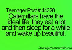 Teenager Post ~ Caterpillars have the ideal life. They eat a lot and then sleep for a while and wake up beautiful. Teenager Quotes, Teen Quotes, Teenager Posts, Funny Relatable Memes, Funny Quotes, Relatable Posts, Funny Teen Posts, Teen Life, Thats The Way