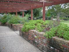 Hermann Park Herb Garden by CosmoPolitician, via Flickr