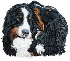 Bernese Mountain Dog Painting - Psssst by Liane Weyers