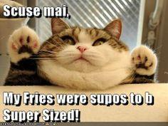 Super Sized Please!