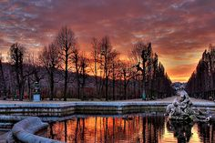 Schönbrunn Palace Gardens, Vienna, Austria http://www.travelandtransitions.com/european-travel/european-travel-top-european-river-cruise-ideas-christmas-2014/
