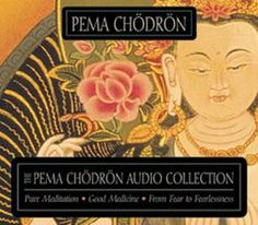 Pema Chodron is wonderful. I love her for making Buddhism accessible to beginners like me.