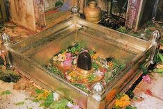 Kashi Vishwanath Jyotirlinga is situated in Varanasi, Uttar Pradesh and this temple attracts Many Tourists all over the world throughout the year.