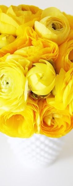 sunny yellow!