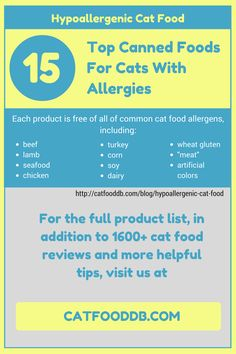 Hypoallergenic Cat Food: 15 Top Canned Foods For Cats With Allergies #cats #catfood #catfooddb #hypoallergenic #allergies