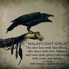 The Celtic Witch staffordshire moorlands. The divine guides the heart of the witch. The witch nurtures this power Witch Quotes, Me Quotes, Qoutes, Dark Quotes, Pagan Quotes, Quotations, Maleficent Quotes, Book Of Shadows, Spirit Animal