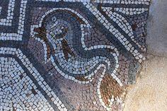 Dolphin, 5/6th century AD, Delphi, Greece. Photo: Helen Miles Mosaics