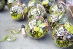 Gifts in Glass in The BULLETIN at Terrain