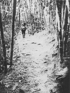 North Vietnamese Army troops on the Ho Chi Minh trail in Laos, photographed by a MACV-SOG reconnaissance team.