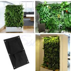 oficinas con jardines verticales