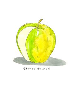 Grimes Golden Heirloom Apple Art Print Apple Illustration, Pen And Watercolor, Watercolor Paintings, Watercolor Ideas, Food Design, Apple Art, Yellow Art, Ink Illustrations, Kitchen Art