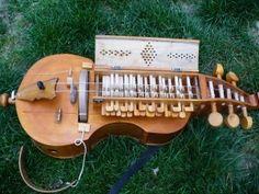 Hurdy Gurdy, Buzzer, Pilgrim, Musical Instruments, Guitar Building, Guitars, Libros, Musik, Music Instruments