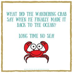 Punny beach riddle: What did the wandering crab say when he finally made it back to the ocean? Long time no sea! Funny Riddles, Cute Jokes, Jokes And Riddles, Corny Jokes, Mom Jokes, Funny Jokes For Kids, School Jokes, Funny Puns, Funny Quotes