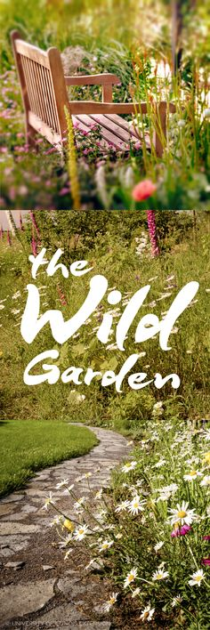 "The Wild Garden - a rejection of the neat and tidy. This new landscaping trend tells us to ""get wild in design."" Instead of neat, clean bed lines try a looser approach, incorporating wild plants for added emphasis."